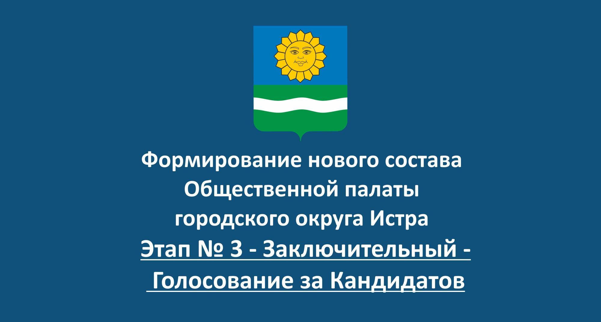 Обращение кандидата в общественную палату городского округа Истра